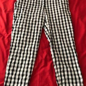 Ann Taylor Loft Casual Pants